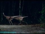 Прогулки с динозаврами. В стране гигантов (2) - Гигантский коготь» (BBC, 2002)
